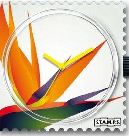 S.T.A.M.P.S. Watch Strelitzia