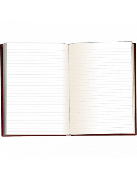 Correspondances Izou Notebook Blue Bird
