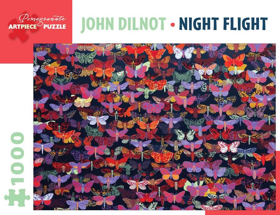 AA1023 John Dilnot - Night flight
