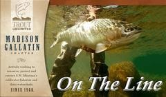 Madison Gallatin Trout Unlimited Upcoming Events