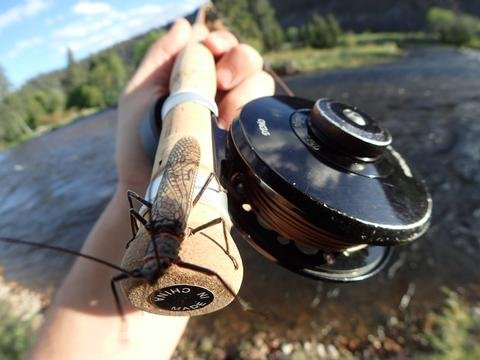 How to Succeed this Salmon Fly Season. Five Tips to Catch More Fish.