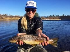 Happy New Year Fly Fishing Newsletter