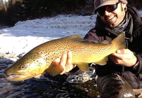 Early December Big Sky Fishing Forecast