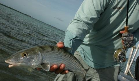 "Day Two. 10/26 Turnoff Flats Lodge. ""Plan B is for Bonefish"""