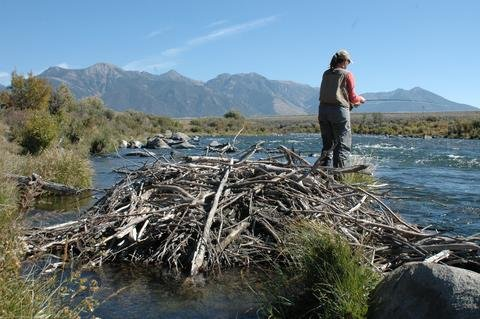 Is fly fishing really that expensive?