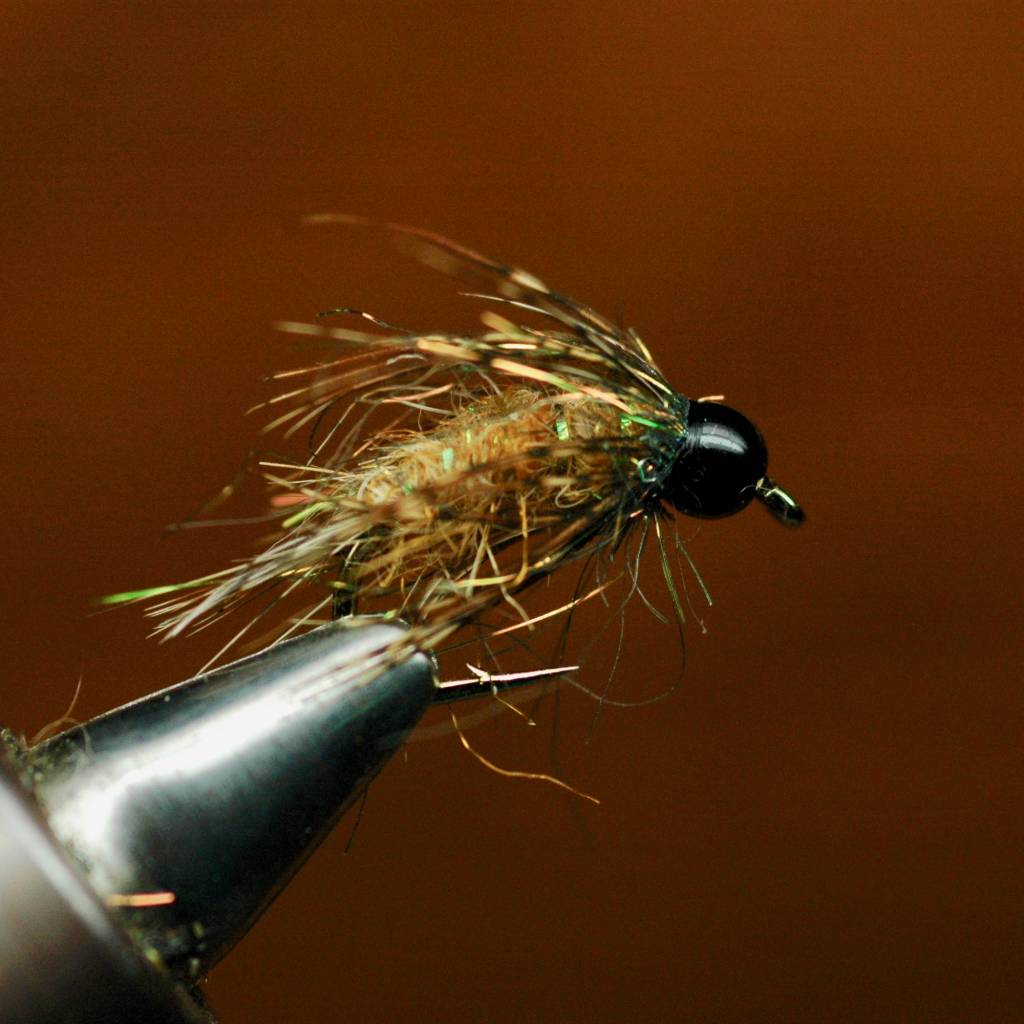 Wednesday Night Fly Tying...Bird of Prey October Caddis