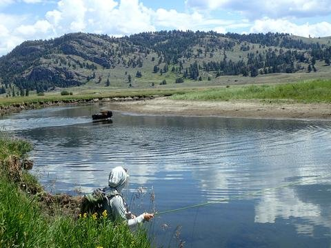 Montana Fly Fishing Resolutions 2018