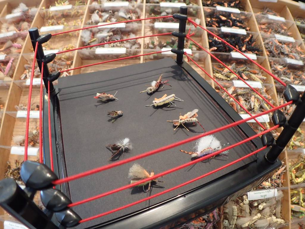 The Great Grasshopper Throw Down