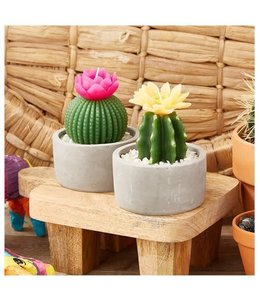 Two's Company TC Cactus Candle