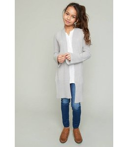Distressed Detailed Cardigan Silver