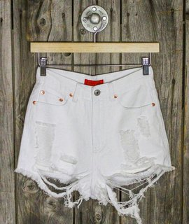 Wrecked cut off shorts