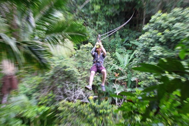 Toro Negro - Hiking  Waterfall Rappelling  Zip Line  Adventure  Rainforest Tour