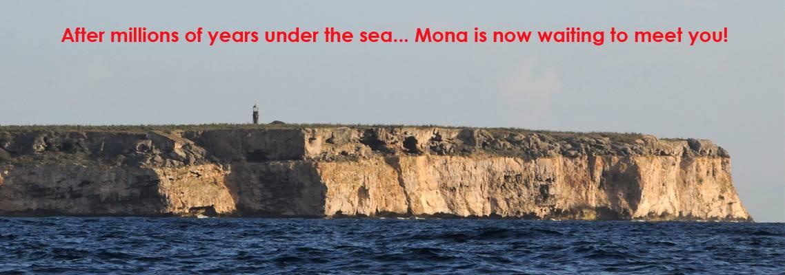 Mona 8