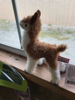 """Alpaca, Fawn and White, 6"""""""