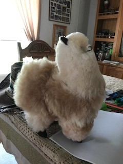 "Alpacas, Stuffed 12"" White Standing"