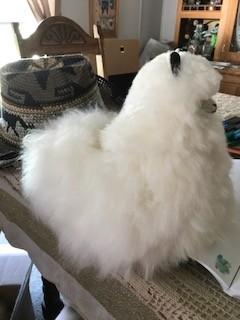 """Alpaca Stuffed, 12"""" White Cushed"""