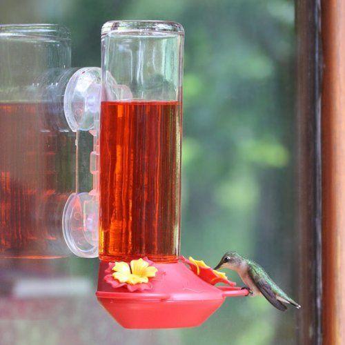 Garden Jewels Garden Jewels Window Mounted Hummingbird Feeder