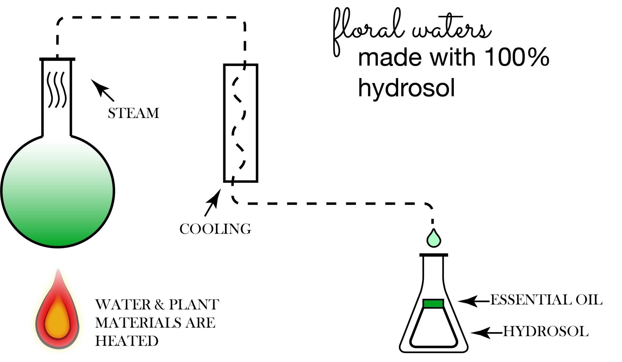 janegee Hydrosol Distillation