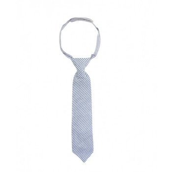 Rugged Butts Blue Seersucker Tie