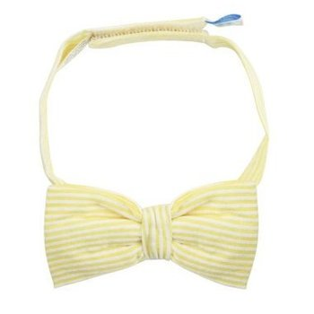 Rugged Butts Yellow Seersucker Bow Tie