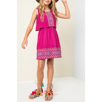 Hayden Wine Embroidered Tank Dress