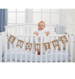 Mud Pie Interchangeable Monthly Banner