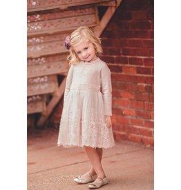 Mae Li Rose Lace Overlay Blush Dress