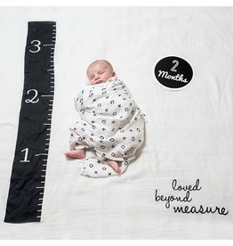 Mary Meyer Loved Beyond Measure Baby's First Year Blanket