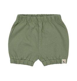 Turtledove Sage Bloomer Shorts