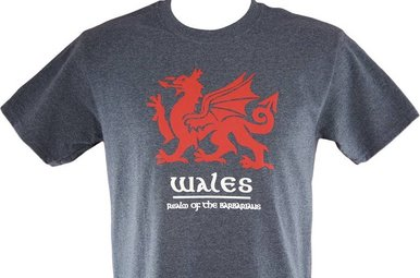 T Shirt: Wales Barbarians