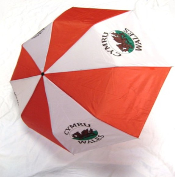 Umbrella: Welsh Dragon