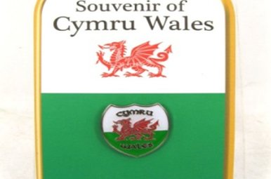 Pin: Wales Crest