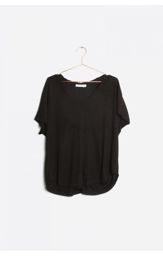 The Whitney Top