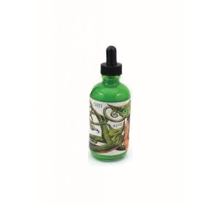 NOODLER'S NOODLER'S DRAGON CATFISH GREEN - 4.5OZ BOTTLED INK