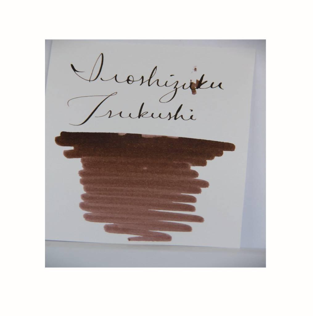 PILOT PILOT IROSHIZUKU BOTTLED INK HORSETAIL TSUKUSHI