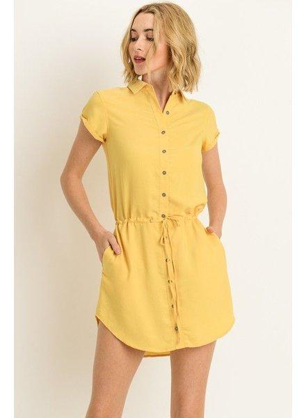 Collared Shirt Dress