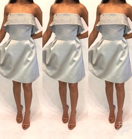 173	Size Large Keepsake Silver Tube Mini Dress