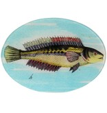 Oval Fish H