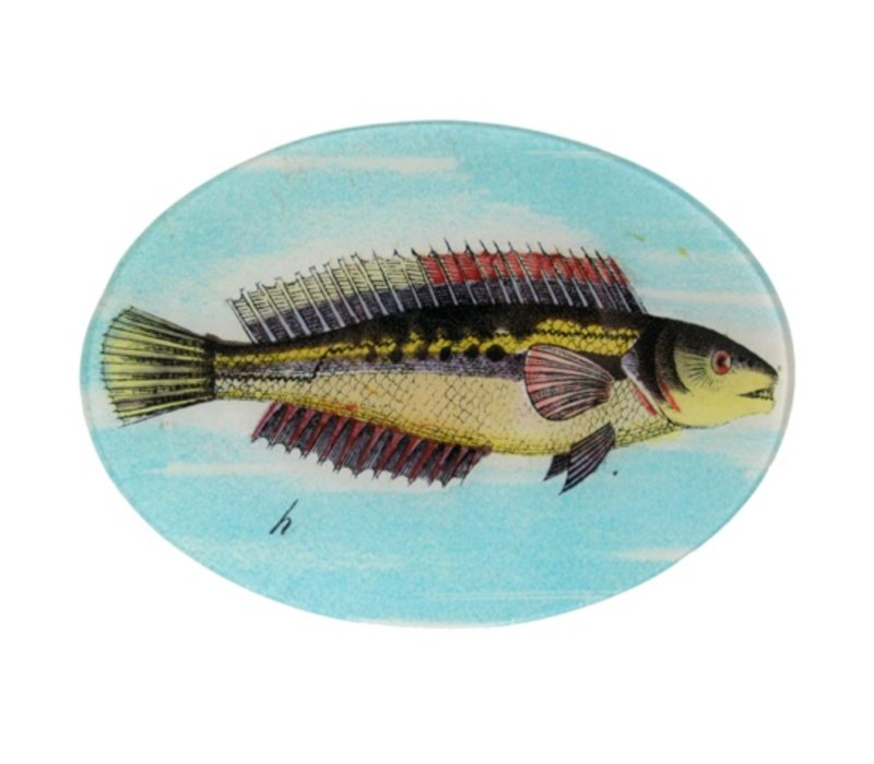Fish H, Oval