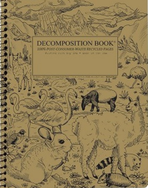 Decomposition Book Andes