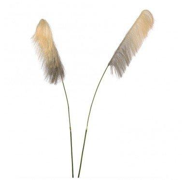 """Pampas Grass 70"""" Flower Stem"""