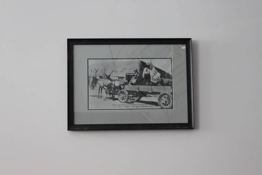 Small Buck Print *CS*