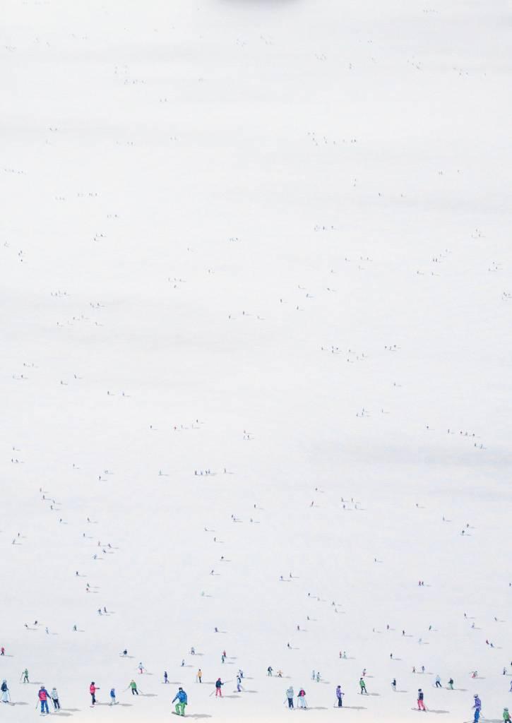 """Frozen Planet 10 - 40""""x28"""" Art"""