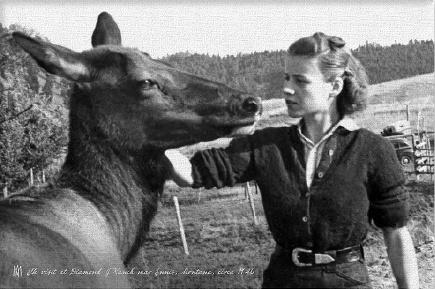 1 Elk & Lady 1940 Canvas Print