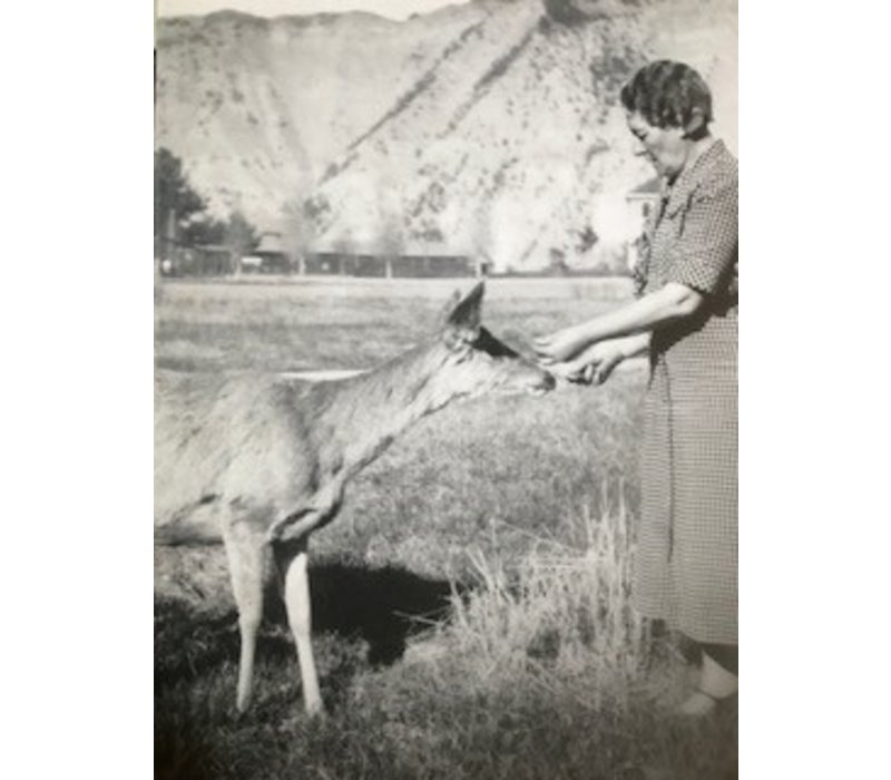 Molly Merica   Julia's Deer