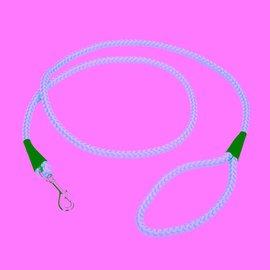 Coastal Coastal Rope Leash x 6' Lime