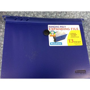 Hanging Poly Expanding File ( 13 Pocket)