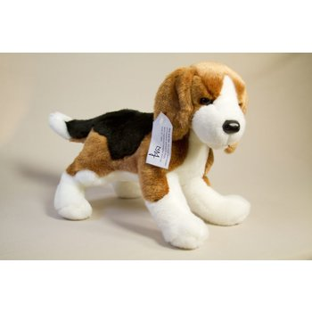 Just for Kids President Johnsons' most famous pet beagles, Him and Her can now be a part of your family! Soft, large plush beagle comes with informational tag.