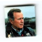SQUARE GHW BUSH COLOR PHOTO