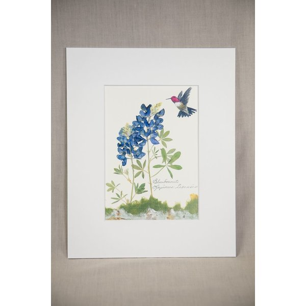 Texas Traditions BLUEBONNET with SMALL HUMMINGBIRD 8X10